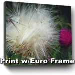 Print with Frame