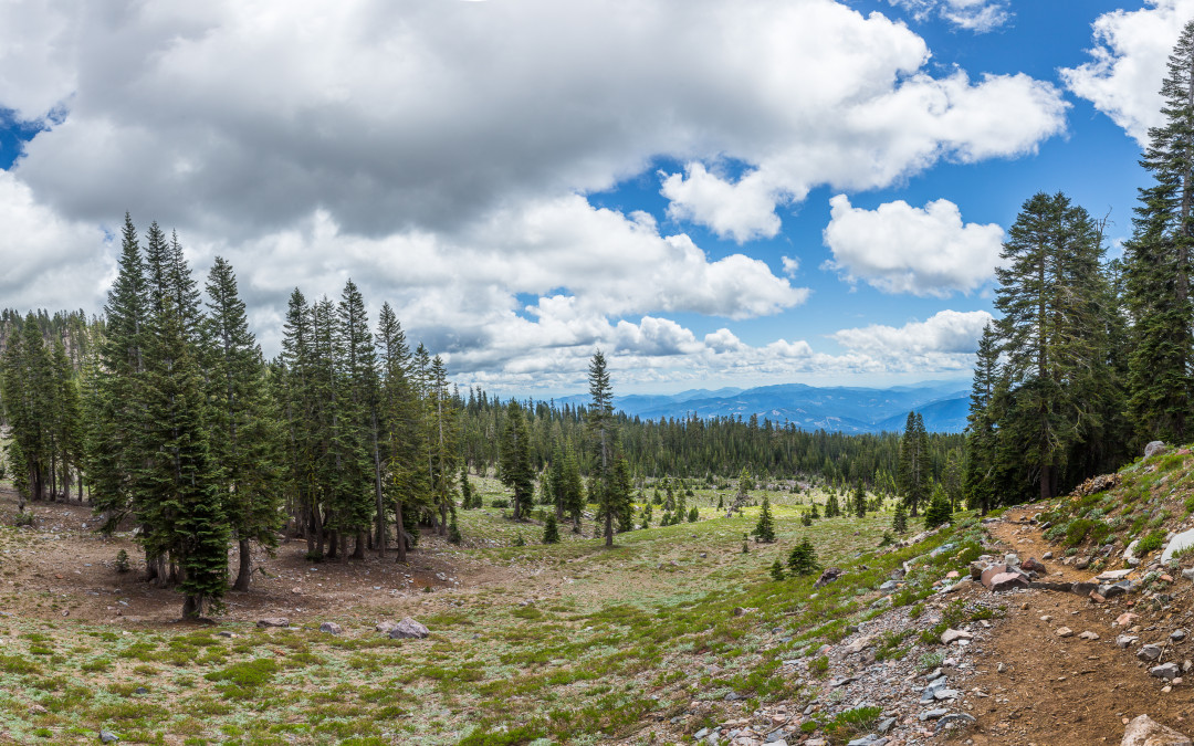Mt Shasta | Lessons Learned | A Few Steps Shy